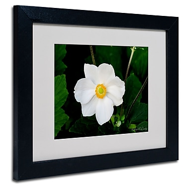 Trademark Fine Art Kathie McCurdy 'Big White Flower' Matted Framed Art
