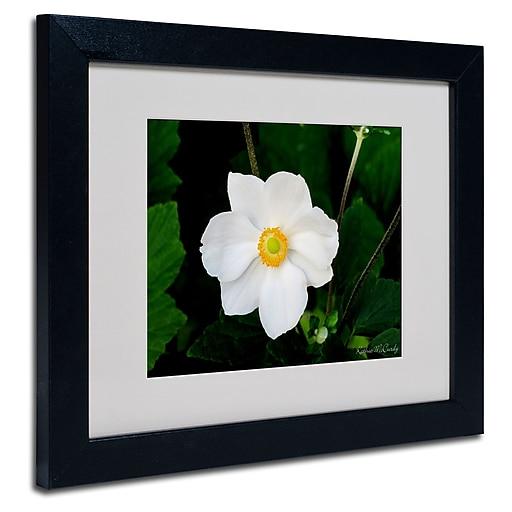Trademark Fine Art Kathie McCurdy 'Big White Flower' Matted Art Black Frame 16x20 Inches