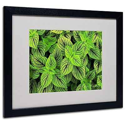 Kathie McCurdy 'Coleus' Matted Framed Art - 11x14 Inches - Wood Frame