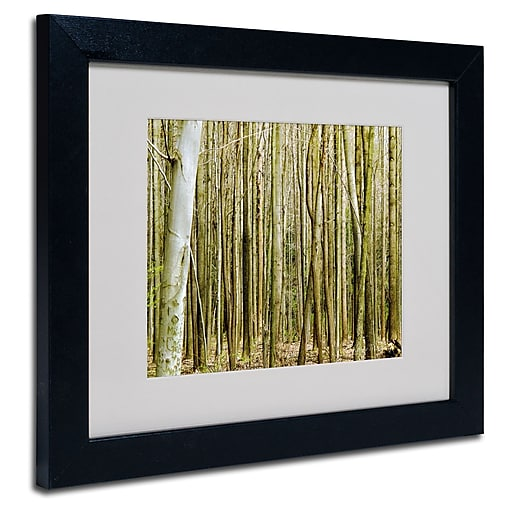 Trademark Fine Art Kathie McCurdy 'Forest Floor Spring' Matted Art Black Frame 11x14 Inches