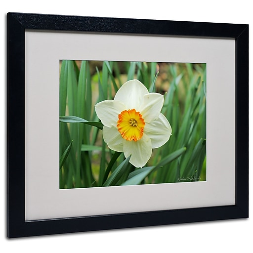 Kathie McCurdy 'Furnace Run Daffodil' Matted Framed Art - 11x14 Inches - Wood Frame