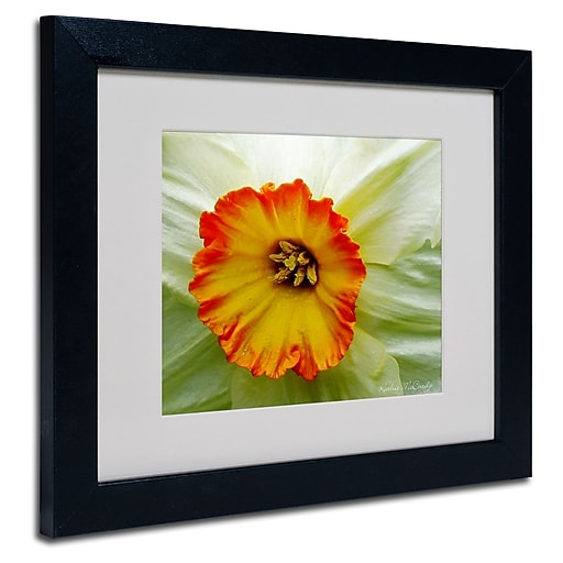 Trademark Fine Art Kathie McCurdy 'Furnace Run Daffodil Large' Matted Black Frame 11x14 Inches