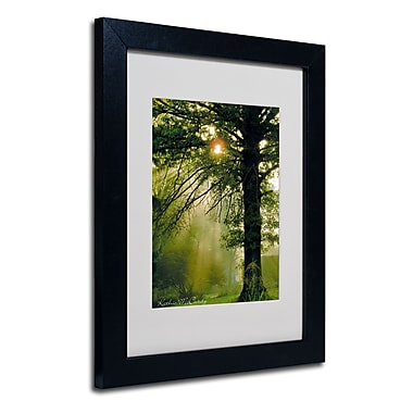 Trademark Fine Art Kathie McCurdy 'Magical Tree' Matted Art Black Frame 16x20 Inches