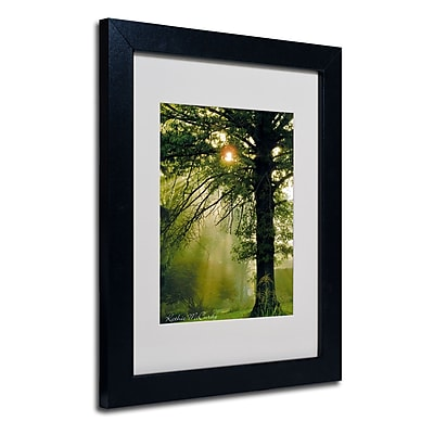 Trademark Fine Art Kathie McCurdy 'Magical Tree' Matted Art Black Frame 11x14 Inches