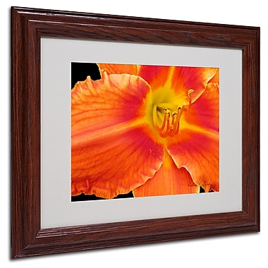 Kathie McCurdy 'Orange Day Lily' Matted Framed Art - 16x20 Inches - Wood Frame