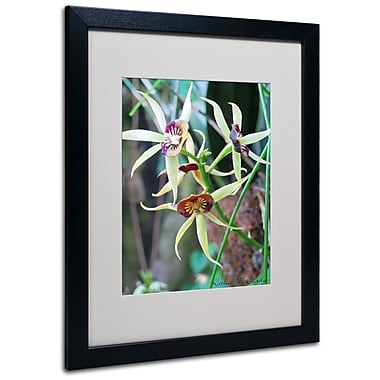 Kathie McCurdy 'Orchids I' Matted Framed Art - 11x14 Inches - Wood Frame