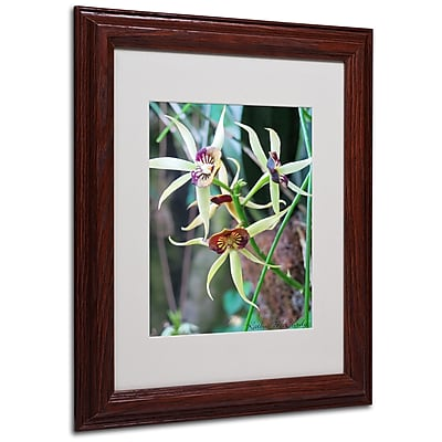 Kathie McCurdy 'Orchids I' Matted Framed Art - 16x20 Inches - Wood Frame