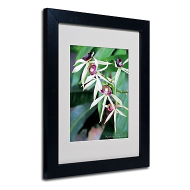 Trademark Fine Art Kathie McCurdy 'Orchids II' Matted Art Black Frame 16x20 Inches