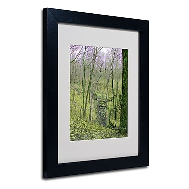 Trademark Fine Art Kathie McCurdy 'Surreal Woods' Matted Art Black Frame 11x14 Inches