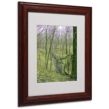 Kathie McCurdy 'Surreal Woods' Matted Framed Art - 16x20 Inches - Wood Frame