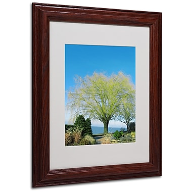 Kathie McCurdy 'Wind In the Willow' Matted Framed Art - 16x20 Inches - Wood Frame