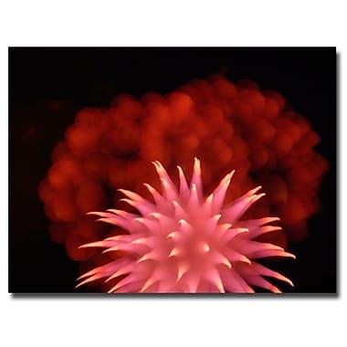 Trademark Fine Art Kurt Shaffer 'Abstract Fireworks' Canvas Art 24x32 Inches