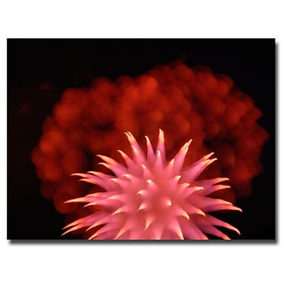 Trademark Fine Art Kurt Shaffer 'Abstract Fireworks' Canvas Art 24x32 Inches