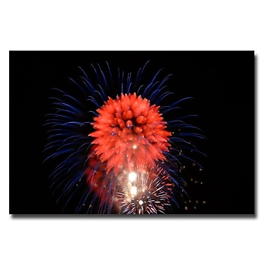 Trademark Fine Art Kurt Shaffer 'Abstract Fireworks II' Canvas Art 22x32 Inches
