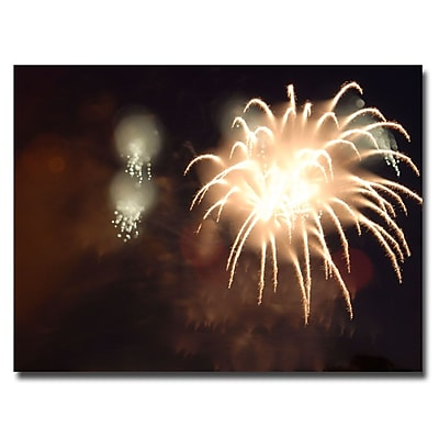 Trademark Fine Art Kurt Shaffer 'Abstract Fireworks IV' Canvas Art 35x47 Inches