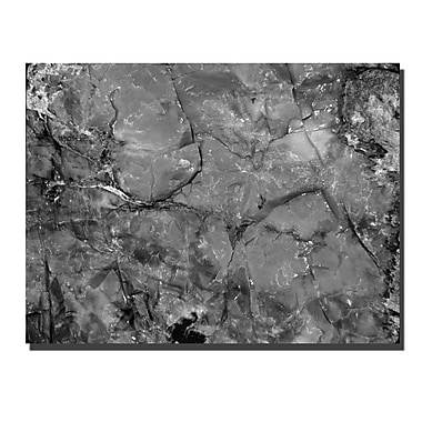Trademark Fine Art Petrified Abstract by Kurt Shaffer-Gallery Wrapped