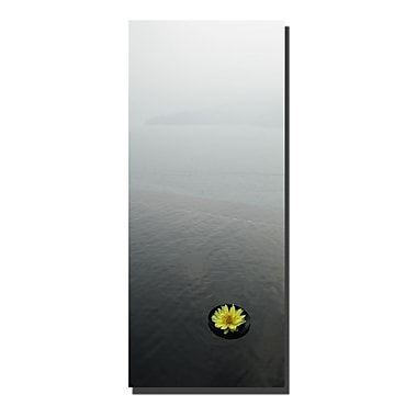 Trademark Fine Art Zen Lotus by Kurt Shaffer-Gallery Wrapped Canvas Art 30x47 Inches