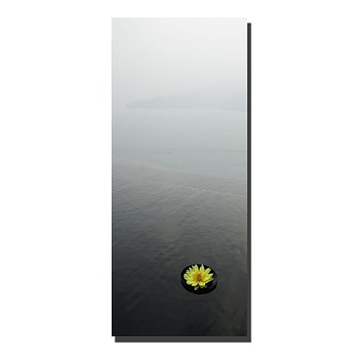 Trademark Fine Art Zen Lotus by Kurt Shaffer-Gallery Wrapped Canvas Art 26x40 Inches