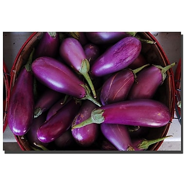 Trademark Fine Art Eggplant Basket by Kurt Shaffer Canvas Art