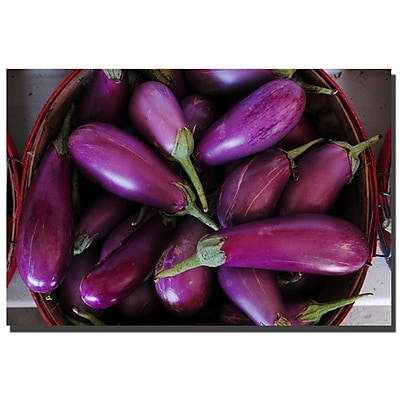 Trademark Fine Art Kurt Shaffer 'Eggplants' Canvas Art 14x19 Inches