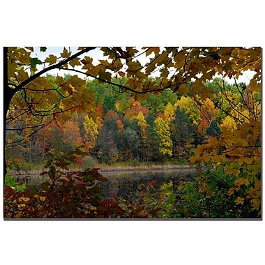 Trademark Fine Art Kurt Shaffer 'Golden Lake' Canvas Art