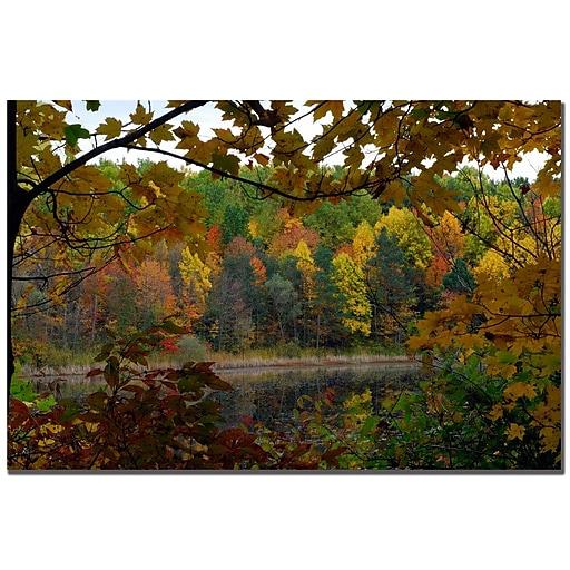 Trademark Fine Art Kurt Shaffer 'Golden Lake' Canvas Art