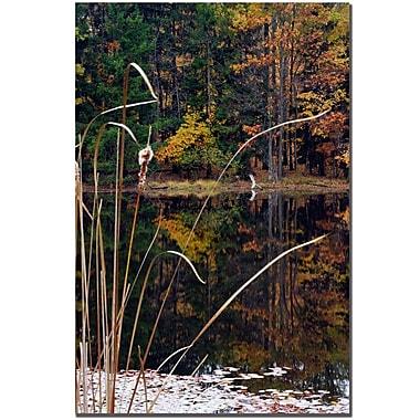 Trademark Fine Art Kurt Shaffer 'Sunset Reflections' Canvas Art