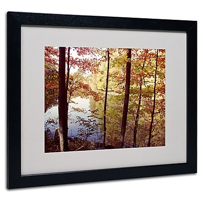 Kurt Shaffer 'A Secret Pond' Framed Matted Art - 11x14 Inches - Wood Frame