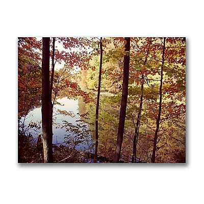 Trademark Fine Art A Secret Pond by Kurt Shaffer-Gallery Wrapped Canvas 14x19 Inches