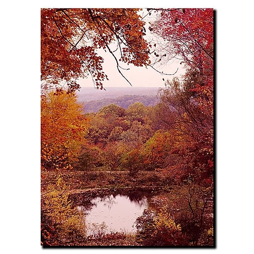 Trademark Fine Art The Cuyahoga Valley by Kurt Shaffer-Gallery Wrapped 24x32 Inches