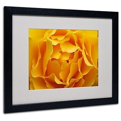 Kurt Shaffer 'Hypnotic Yellow Rose' Matted Framed Art - 11x14 Inches - Wood Frame