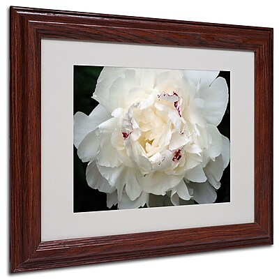 Kurt Shaffer 'Perfect Peony' Framed Matted Art - 16x20 Inches - Wood Frame
