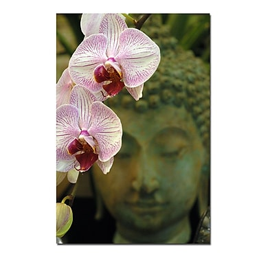 Trademark Fine Art Orchids and Buddha by Kurt Shaffer-Gallery Wrapped