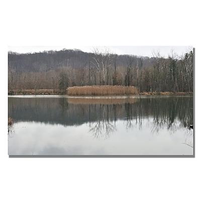 Trademark Fine Art Kurt Shaffer 'Quiet Winter Day' Canvas Art 14x24 Inches