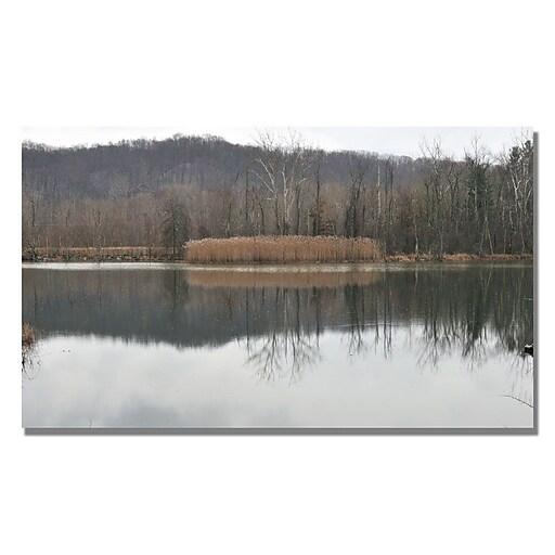 Trademark Fine Art Kurt Shaffer 'Quiet Winter Day' Canvas Art 24x47 Inches