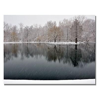 Trademark Fine Art Kurt Shaffer 'Snowy Pond' Canvas Art 18x24 Inches
