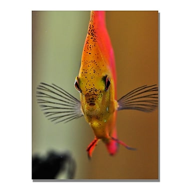 Trademark Fine Art Kurt Shaffer 'Talking with a Fish' Canvas Art 30x47 Inches