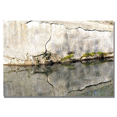 Trademark Fine Art Kurt Shaffer 'Wall Mirror' Canvas Art 18x24 Inches
