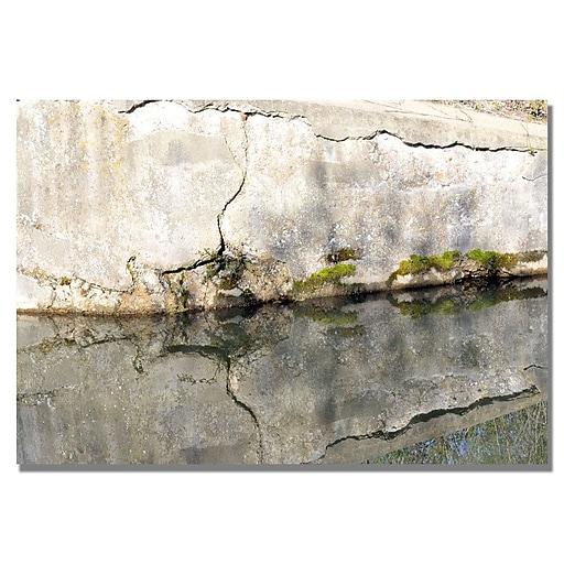 Trademark Fine Art Kurt Shaffer 'Wall Mirror' Canvas Art 30x47 Inches