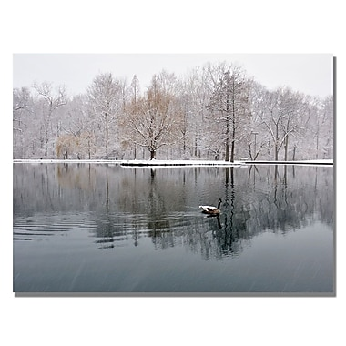 Trademark Fine Art Kurt Shaffer 'Winter Goose' Canvas Art 30x47 Inches
