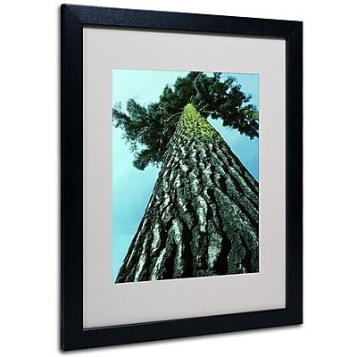 Kurt Shaffer 'A Tree of Life' Framed Matted Art - 11x14 Inches - Wood Frame