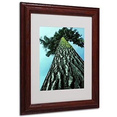 Kurt Shaffer 'A Tree of Life' Framed Matted Art - 16x20 Inches - Wood Frame