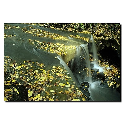 Trademark Fine Art Fall Falls by Kurt Shaffer-Gallery Wrapped Canvas 35x47 Inches