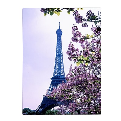 Trademark Fine Art Kathy Yates 'Eiffel Tower with Blossoms' Matted Art Black Frame 11x14 Inches