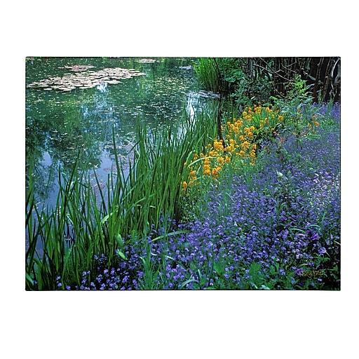 Trademark Fine Art Kathy Yates 'Monet's Lily Pond' Canvas Art 30x47 Inches