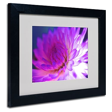 Trademark Fine Art Kathy Yates 'Mod Dahlia' Matted Art Black Frame 11x14 Inches
