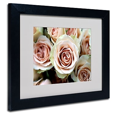 Trademark Fine Art Kathy Yates 'Pale Pink Roses' Matted Art Black Frame 16x20 Inches