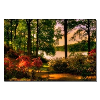 Trademark Fine Art Lois Bryan 'A Walk in the Park' Canvas Art 22x32 Inches