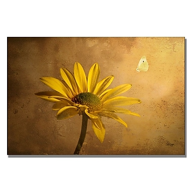 Trademark Fine Art Lois Bryan 'Expectant' Canvas Art
