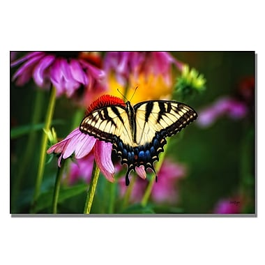 Trademark Fine Art Lois Bryan 'Garden Jewelry' Canvas Art 16x24 Inches